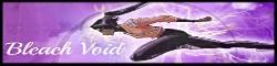Bleach: Void