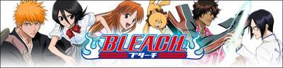 Bleach Ichirin no hana