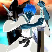 Bleach BR Shinigami Life