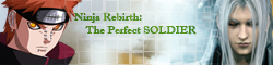 Ninja Rebirth : The Perfect SOLDIER